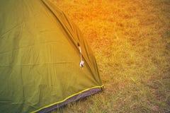 Zielony turystyczny namiot wśród trawy, na obszarze trawiastym, lasu obóz obraz stock