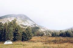 Zielony turystyczny namiot w sosnowym lesie w halnej dolinie zdjęcia royalty free