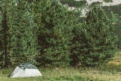 Zielony turystyczny namiot w sosnowym lesie w halnej dolinie obraz stock