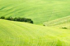 Zielony typowy Tuscan krajobraz w wiosna czasie Obrazy Stock