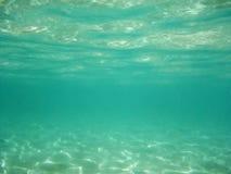 zielony underwater Zdjęcia Royalty Free