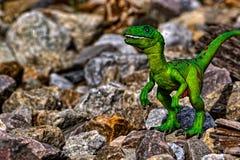 Zielony Velociraptor dinosaura odprowadzenie wśród skał obrazy stock