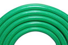 zielony wąż elastyczny Obraz Stock