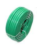 zielony wąż elastyczny Zdjęcie Stock
