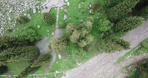 Zielony wąwóz, wysoka świerczyna Strzelaj?cy od powietrza od trutnia, zdjęcie wideo