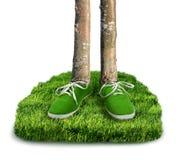 Zielony węgla odcisku stopy pojęcie Obraz Royalty Free
