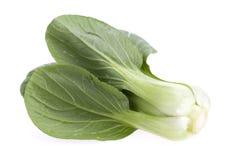Zielony warzywo na Białym Bacground Fotografia Stock