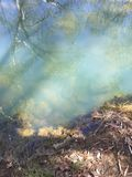 Zielony waterhole w Chillagoe Zdjęcia Royalty Free