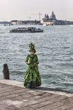 Zielony Wenecki kostium Obrazy Stock