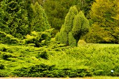 Zielony widoku park publicznie Zdjęcia Royalty Free