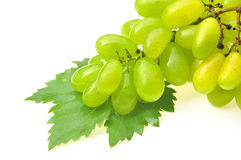 Zielony winogrono Fotografia Royalty Free