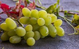 Zielony winogrono Obraz Stock