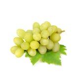 Zielony winogrono i Czerwony winogrono na białym tle (owoc) Zdjęcia Royalty Free