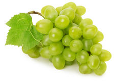 Zielony winogrono odizolowywający na białym tle Fotografia Royalty Free