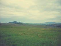Zielony wiosna krajobraz w wsi na chmurnym dniu; panoramiczny widok, retro styl Zdjęcia Stock