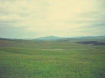 Zielony wiosna krajobraz w wsi na chmurnym dniu; panoramiczny widok, retro styl Zdjęcie Royalty Free