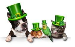 Zielony wiosny zwierzęcia domowego znak ilustracji