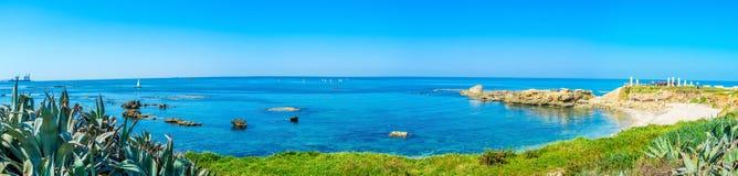 Zielony wybrzeże Obraz Royalty Free