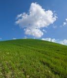 zielony wzgórze Zdjęcia Royalty Free