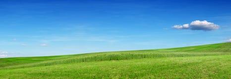 Zielony wzgórze i łąka, niebieskie niebo Ekologia sztandar fotografia stock