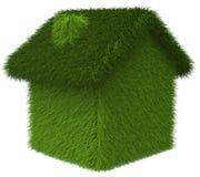zielony zabawa dom Zdjęcia Stock