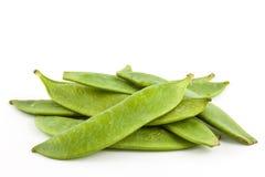 Zielonych grochów Pisum sativum Zdjęcie Stock