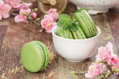 Zielonych herbat macarons Fotografia Royalty Free