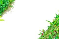 Krawężnika stawu granica Zdjęcie Stock