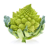 Zielonych Romanesco kalafioru lub Romanesco brokułów kapusta () Obrazy Royalty Free