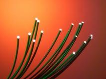 ZIELONYCH włókien światłowodowych DRUCIANY kabel Obraz Royalty Free