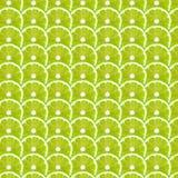 Zielonych wapno plasterków deseniowy tło obraz royalty free