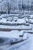 ` ZiemeÄ ¼ blÄ  zma `庭院  库存照片