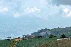 Ziemi uprawnej roślinność na wzgórzach zdjęcia royalty free