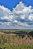 Ziemiaństwo światopogląd, Apache Sitgreaves las państwowy, Arizona, Stany Zjednoczone fotografia stock