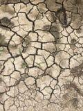 Ziemia aridity zdjęcie stock