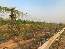 Ziemia dla budowy blisko drogi Fotografia Stock