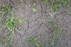 Ziemia niszcząca wielką suszą Brak wodny i krakingowy eart zdjęcie royalty free