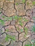 ziemia pękająca zdjęcie stock