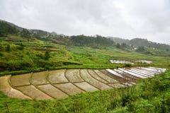 Ziemia rolnictwo Obrazy Stock