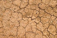 Ziemia sucha Zdjęcia Stock