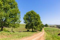 Ziemia uprawna krajobraz Obrazy Stock