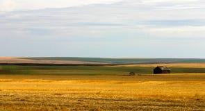 ziemia uprawna Montana zdjęcia stock