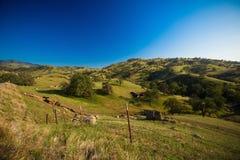 Ziemia uprawna w sierra Nevada pogórza obraz royalty free
