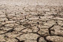 Ziemia z suchym Obrazy Stock
