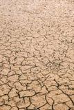 Ziemia z suchym Zdjęcia Stock