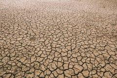 Ziemia z suchym Fotografia Royalty Free
