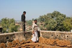 Ziemianin patrzeje blin suszącego nawóz fotografia royalty free