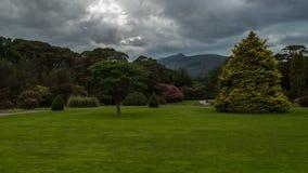 Ziemie przy Muckross domem Fotografia Stock