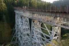 Ziemsetal Przerzuca most - nitującego stalowego beasm wiadukt w Thuringia, Niemcy, techniczny zabytek fotografia stock
