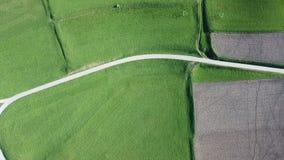 Ziemska ` s linia Truteń pionowo perspektywa zmielony ` s barwi i kształtuje pola rolnicze zbiory wideo